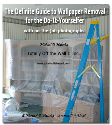 Wallpaper Removal eBook DIY